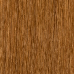 ANGEL 12 50CM 10PK MED LIGHT BROWN